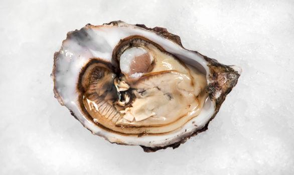 Irish Premium Oysters 2