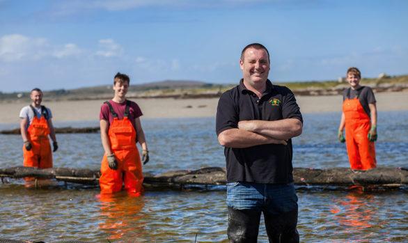 Irish Premium Oysters 6
