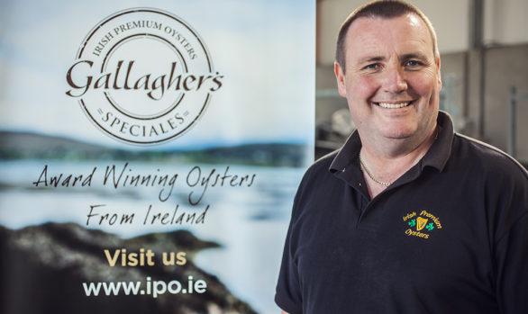 Irish Premium Oysters 9
